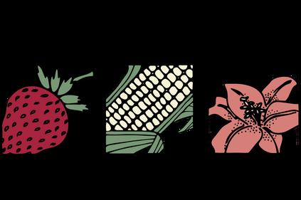 Logo North Coast Growers' Association Farmers' Market